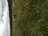 b_158_210_16777215_00_images_Ekocentr_Nashi_meropriyatiya_2021-2022_ekolog_biol_ekspediciya_04.jpeg
